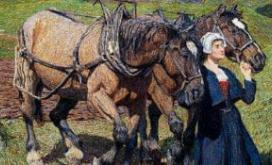 Mostre ed esposizioni - Roccabruna