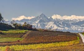 Le Alpi del Monferrato - Camera di Commercio di Trento